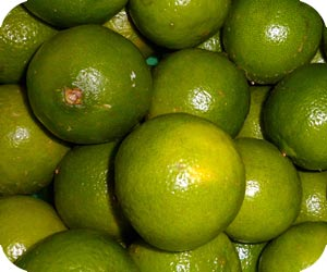 lime picture
