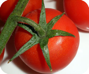 Nightshade Vegetable Tomato